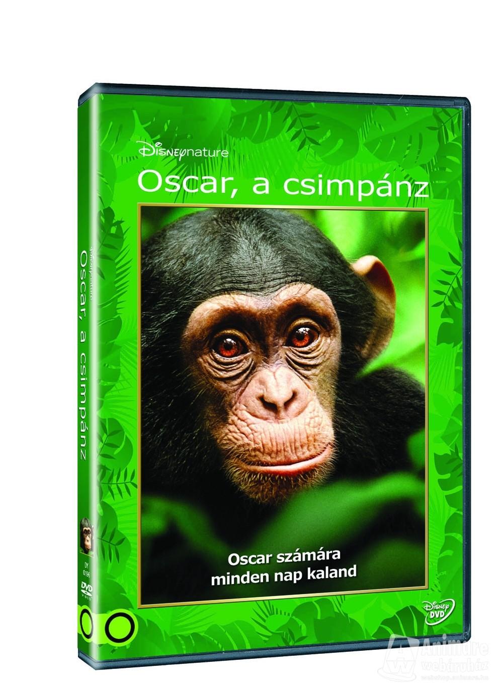 Oscar, a csimpánz